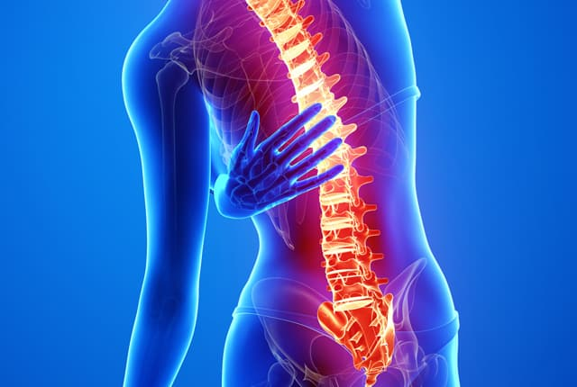 How To Deal With Back Pain – Tips From Your Charlotte NC Chiropractor
