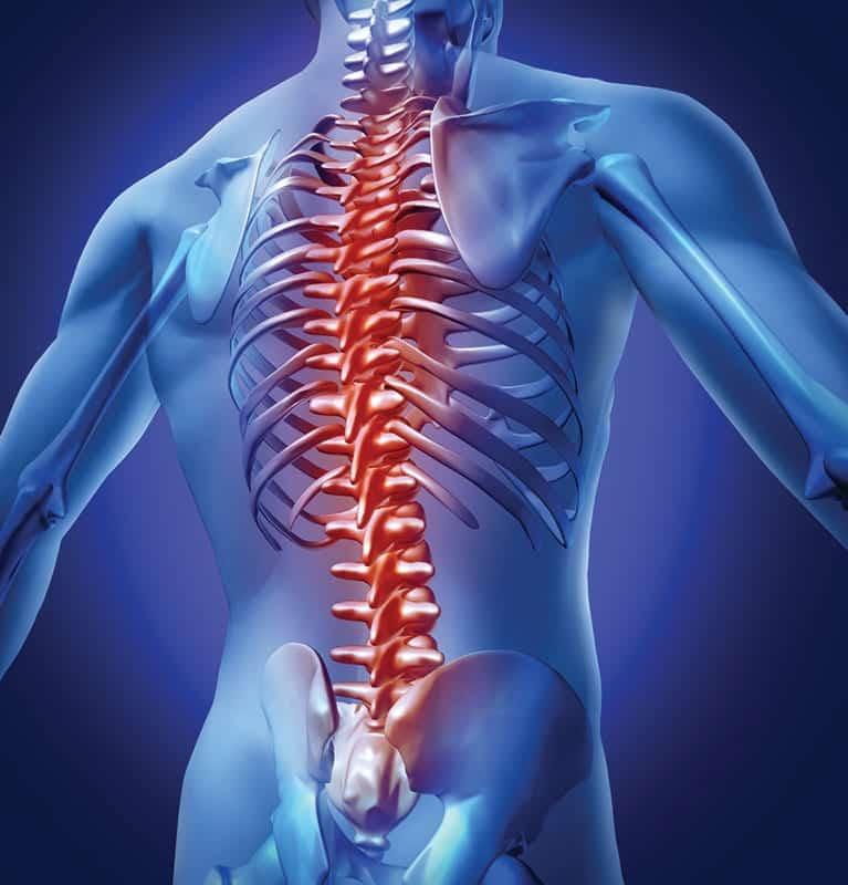 Viajes y dolor de espalda: nuestra guía