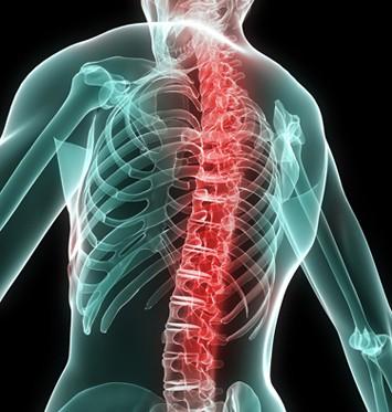Cómo prevenir el dolor de espalda en el trabajo La guía del quiropráctico de Charlotte